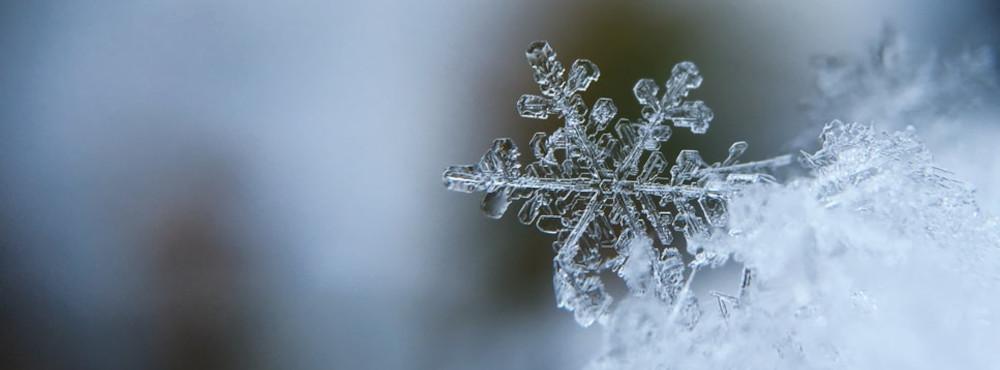 neve in eschimese