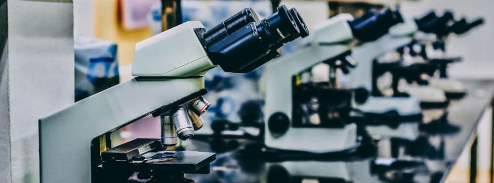 Le principali difficoltà della traduzione scientifica